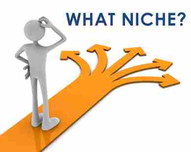 What are the most profitable niches for 2016 and beyond?