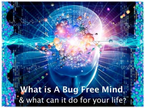 What is a bug free mind?