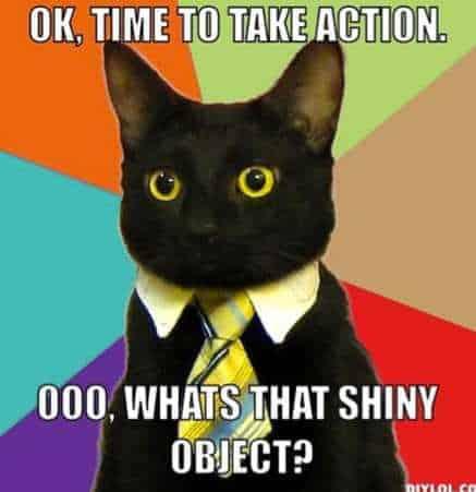 shiny-object-cat
